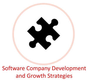Software Company Development and Growth Strategies